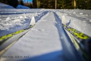 narty biegowe Fischer